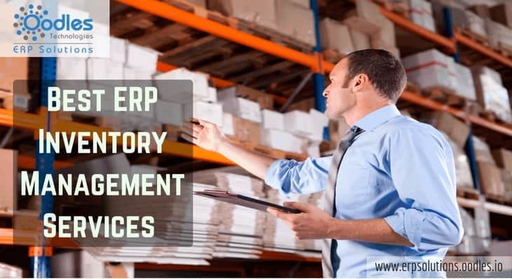 ERP Inventory Management Services