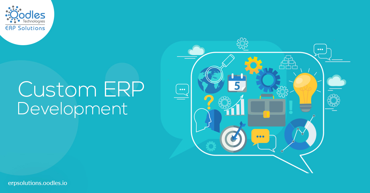 Custom ERP Software Solutions