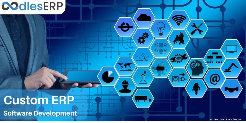 custom ERP application development