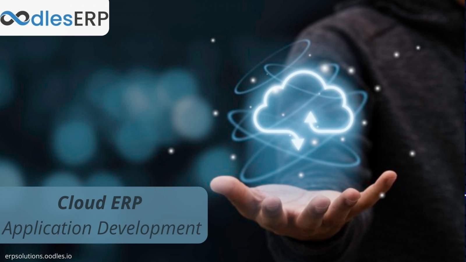 Cloud ERP Application Development